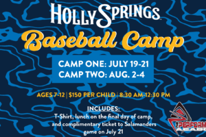Salamanders Hosting Two Baseball Camps This Summer!